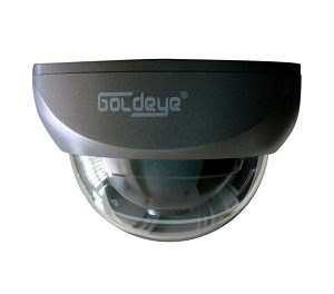 CAMERA DOME GOLDEYE